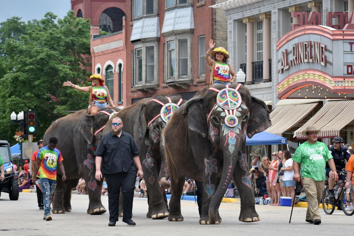 Circus World elephants (copy)