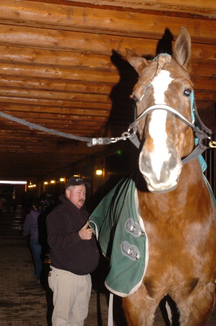 Whoa That S A Big Horse Owners Think He Might Be A World Record News Wiscnews Com
