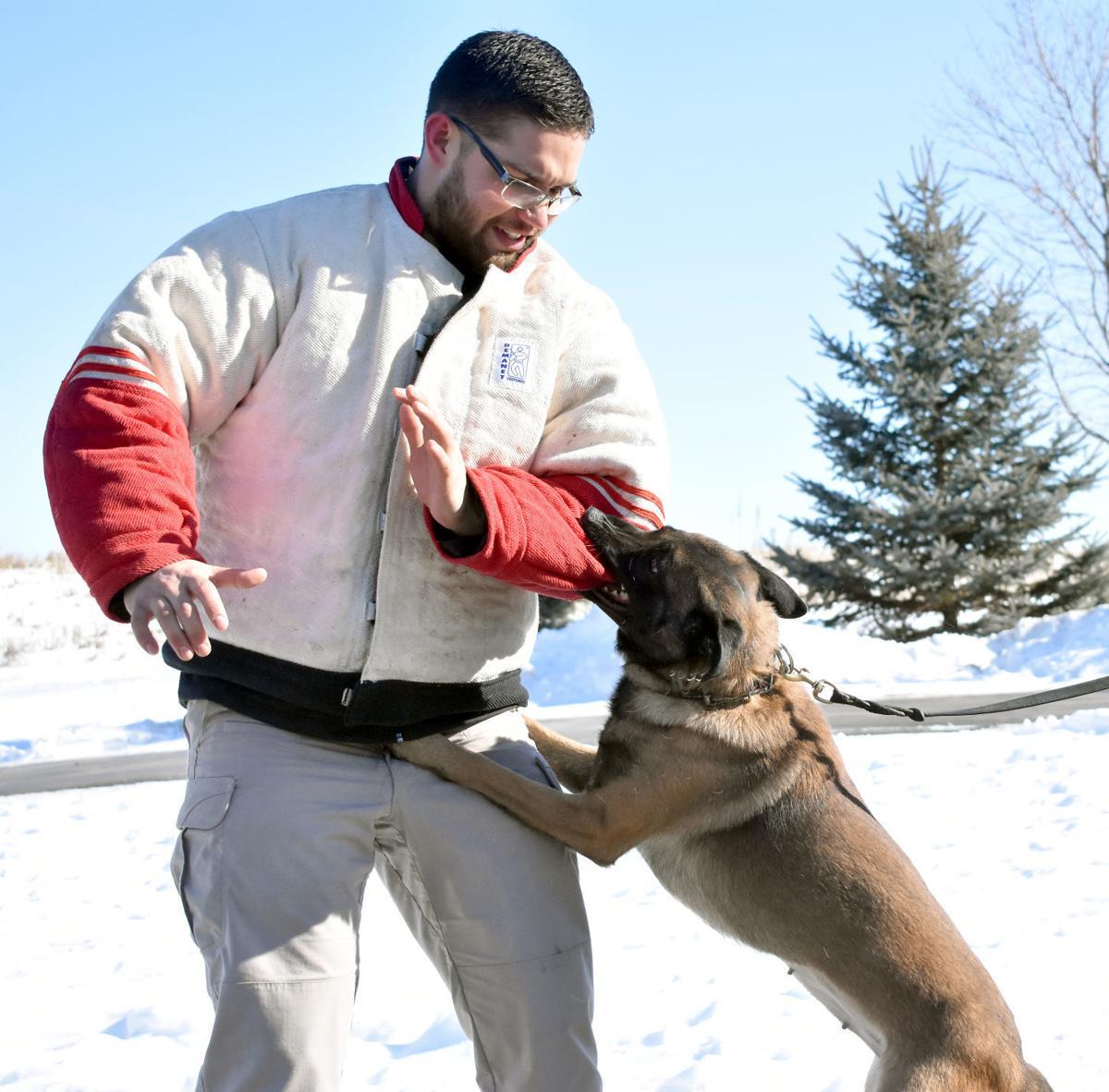 Jessiffany Canine Services