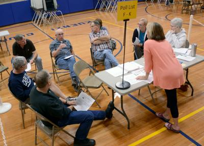 Nearly 1,600 city voters cast early ballots (copy)