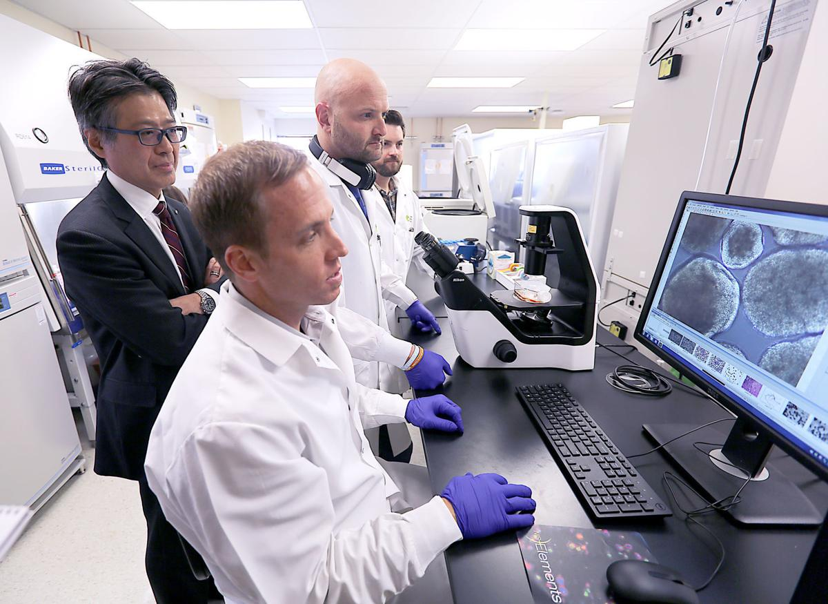CDI workers with cells on computer screen