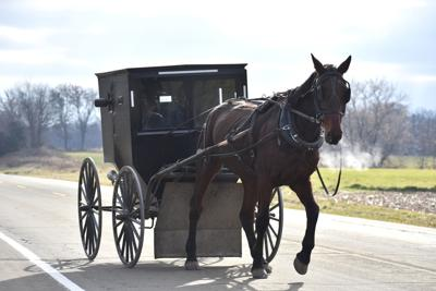 Amish buggy Highway 22 file
