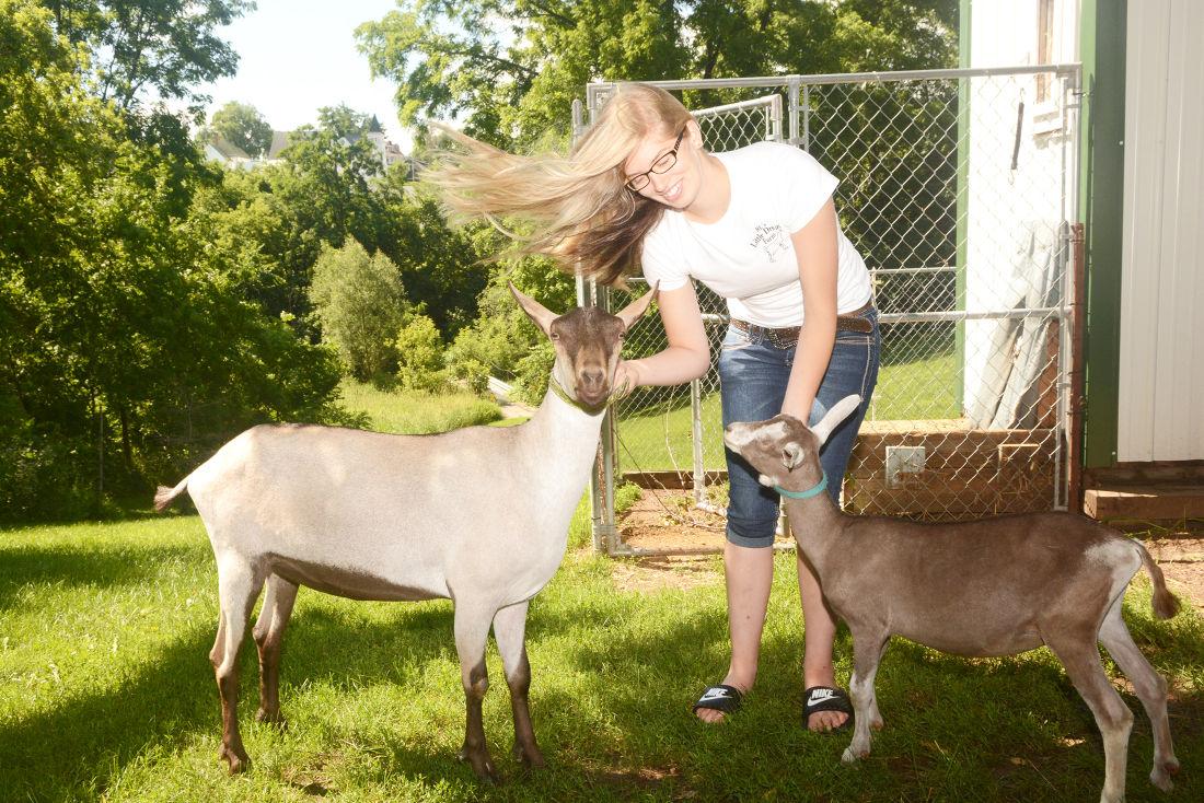 cambria teen u0027s goats prove to be backyard worthy regional news