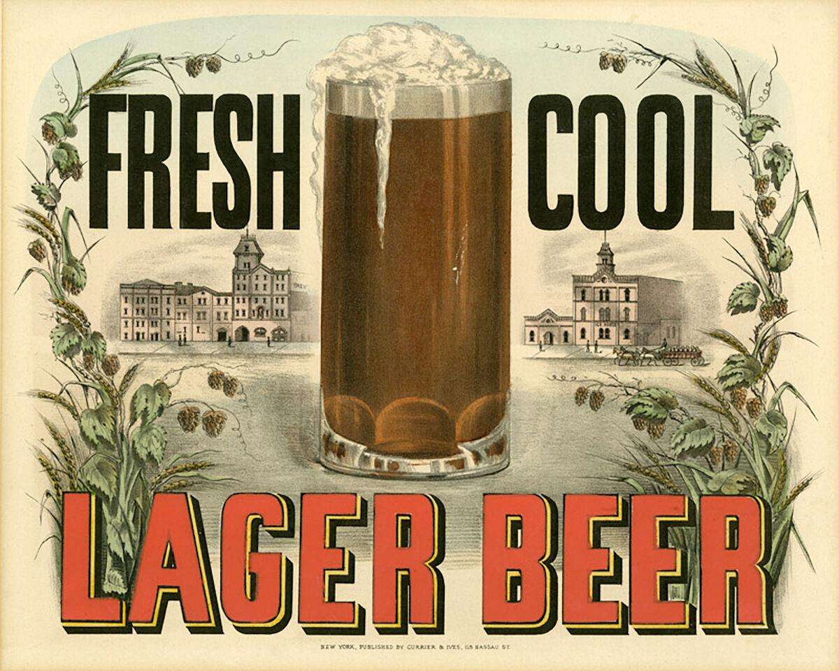 Fresh cool lager beer