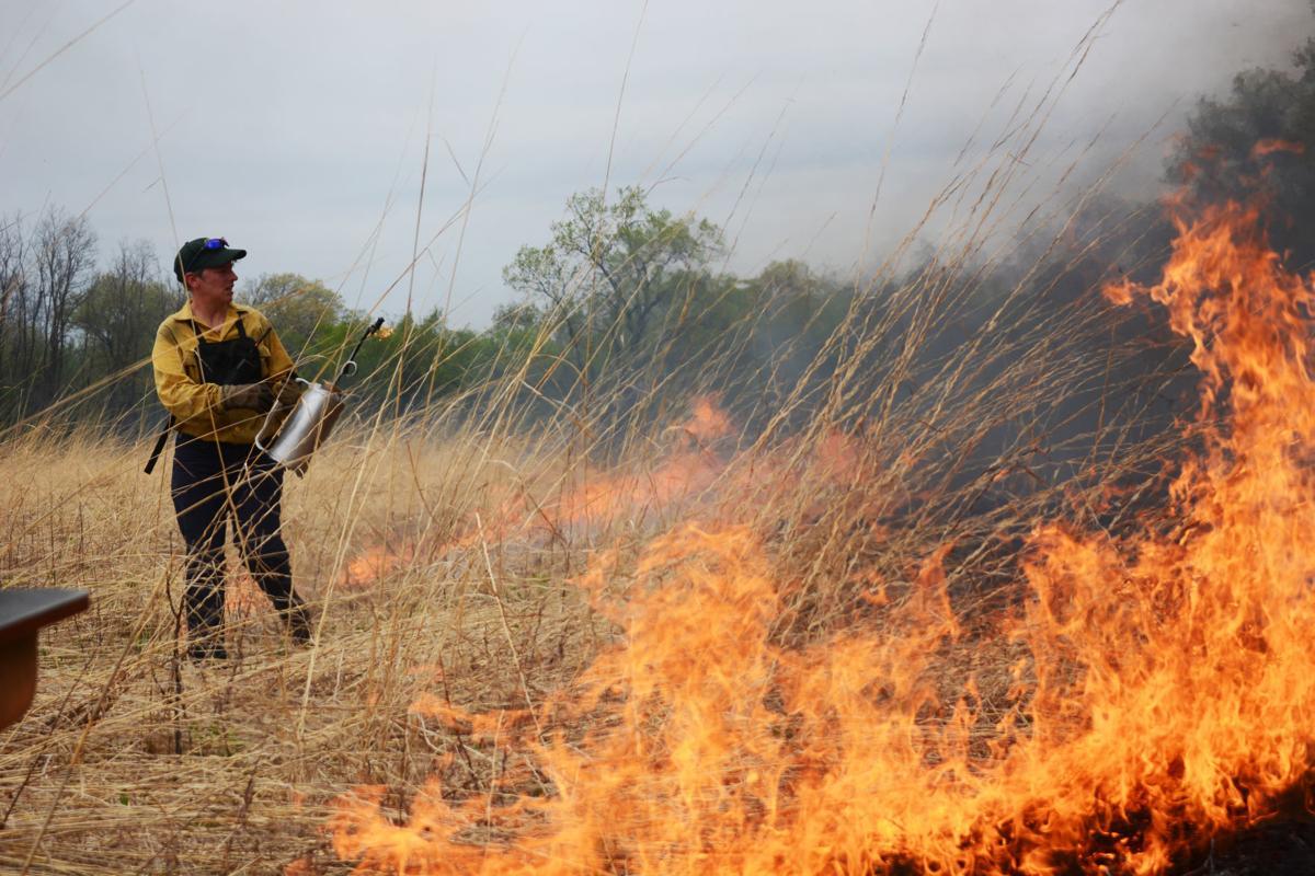 International Crane Foundation burn
