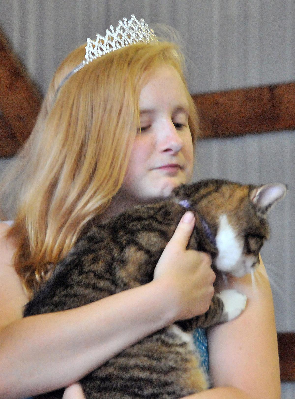 Fair opens with cat show
