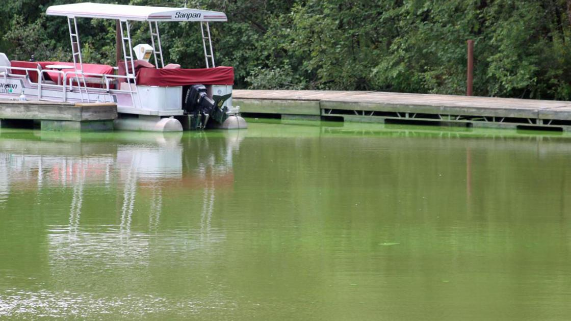Department of Natural Resources urges caution on Blue-Green Algae in Wisconsin - Baraboo News Republic