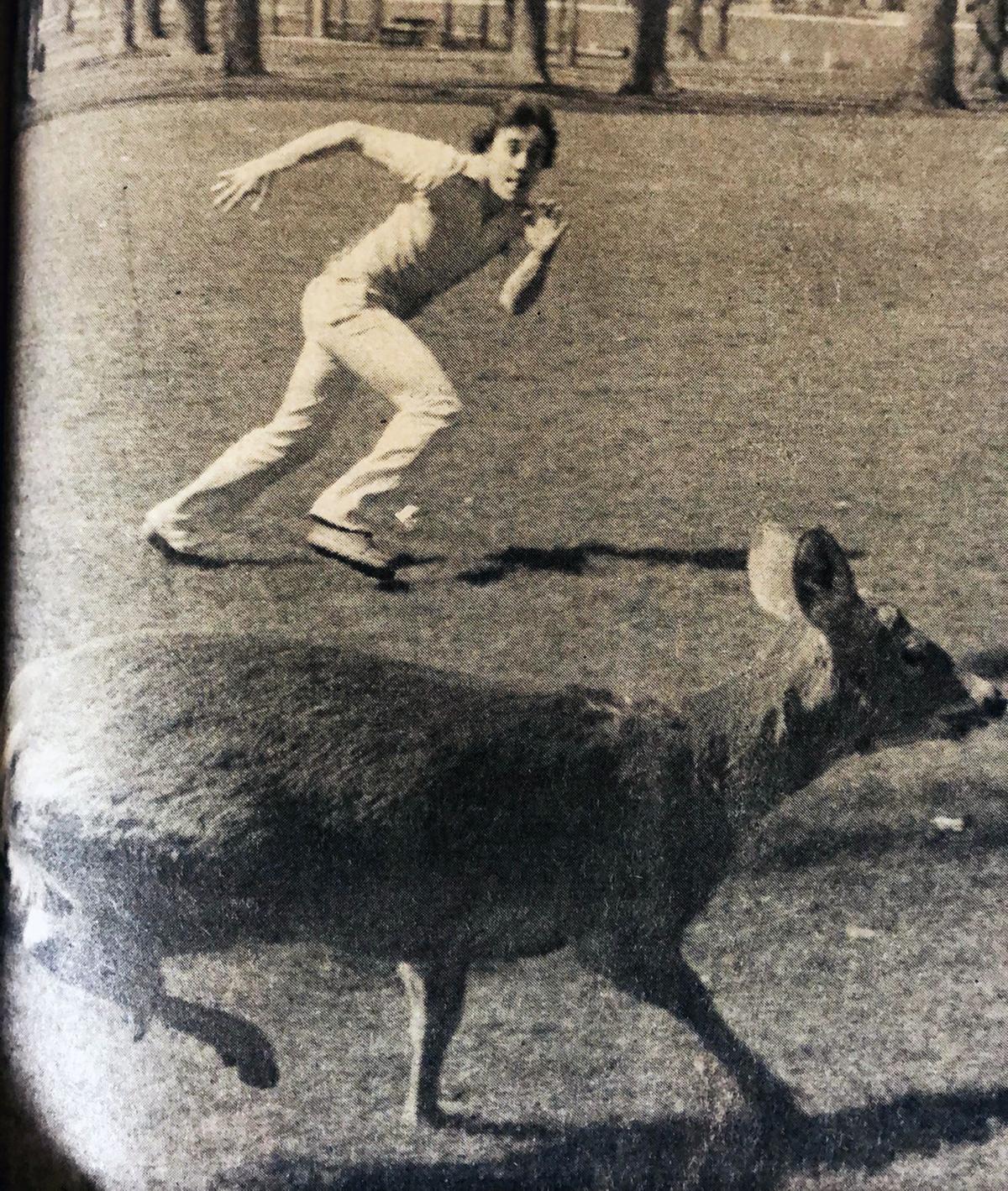 1981 Freddy the Deer