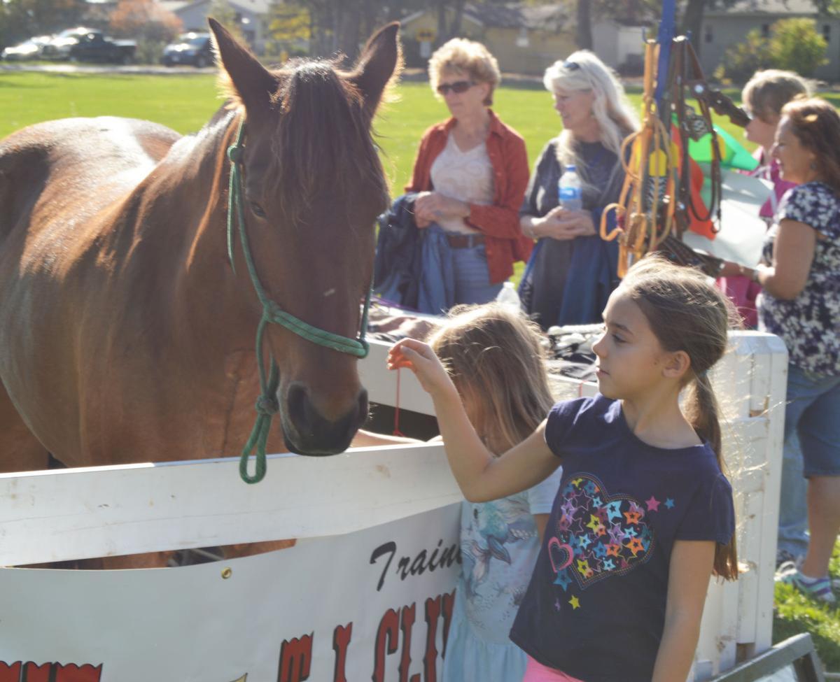 102817-jrnl-news-horses-1