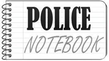 Police notebook for July 13, 2019 | Crime and courts