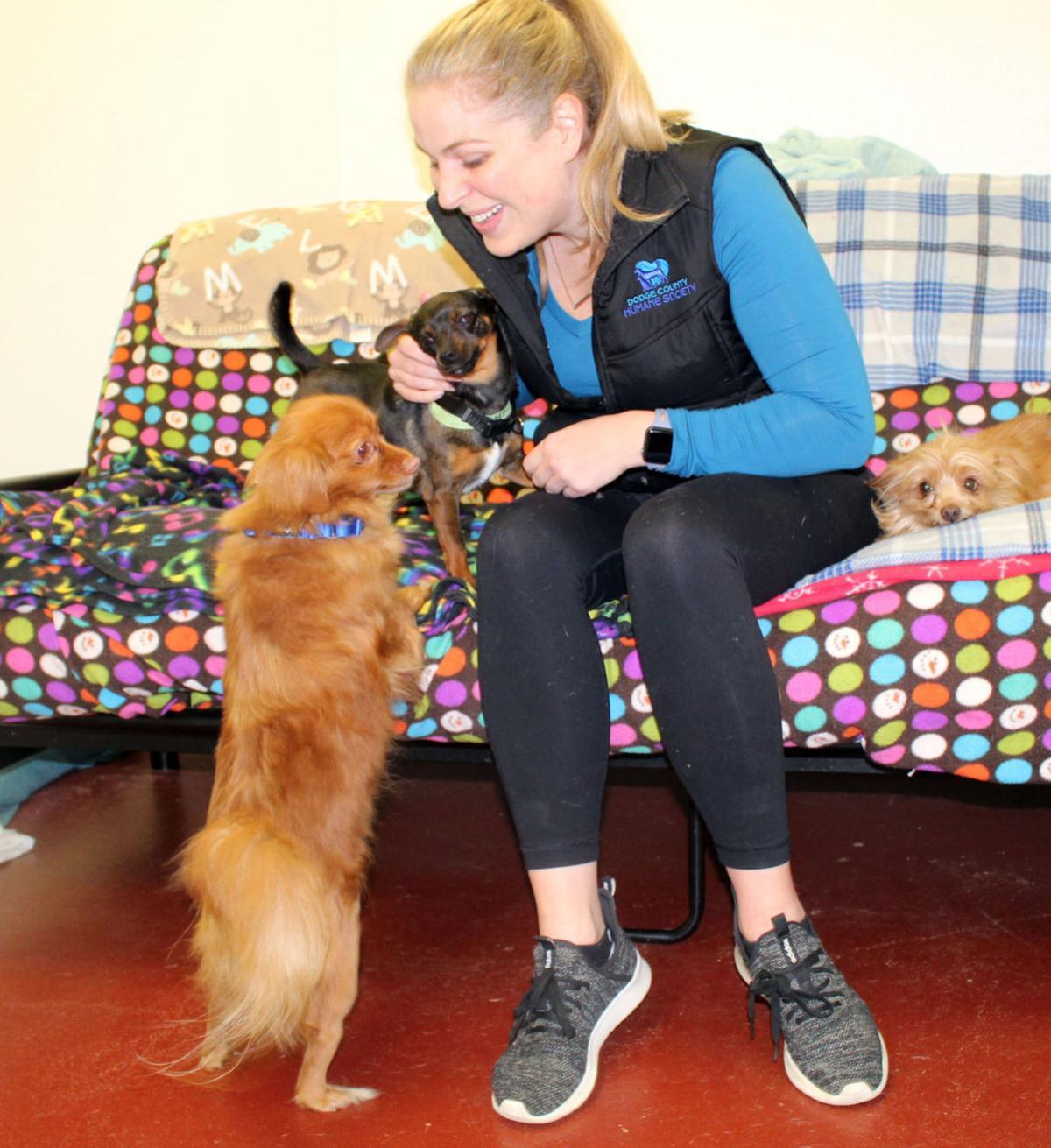 Dodge County Humane Society Director Kensie Drinkwater