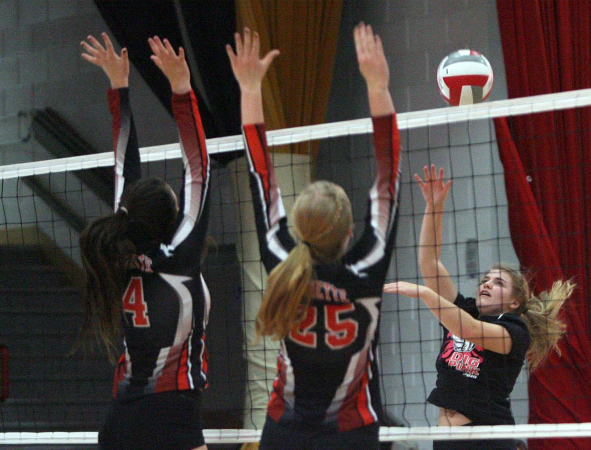 PREP GIRLS VOLLEYBALL: Columbus gets the sweep over Poynette on