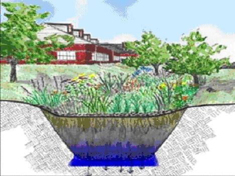 Rain Gardens A Beautiful Way To Reduce Runoff Pollution