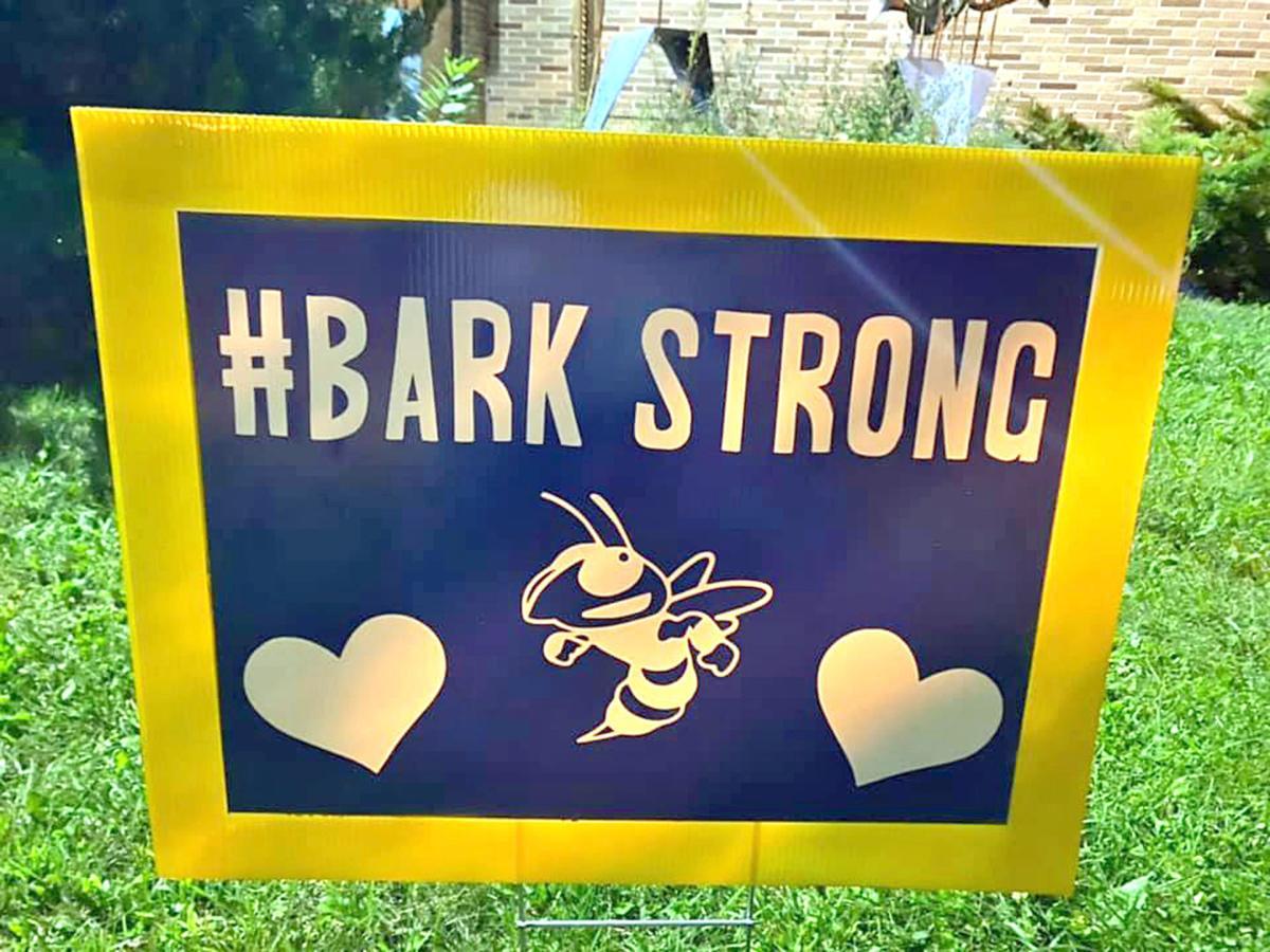 Bark Strong yard sign
