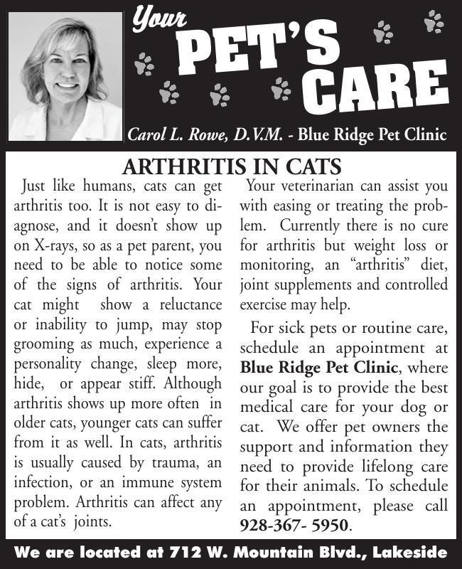 Blue Ridge Pet's Care Arthritis in Cats