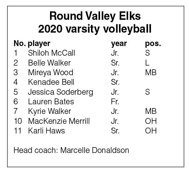 Round Valley 2020 volleyball roster