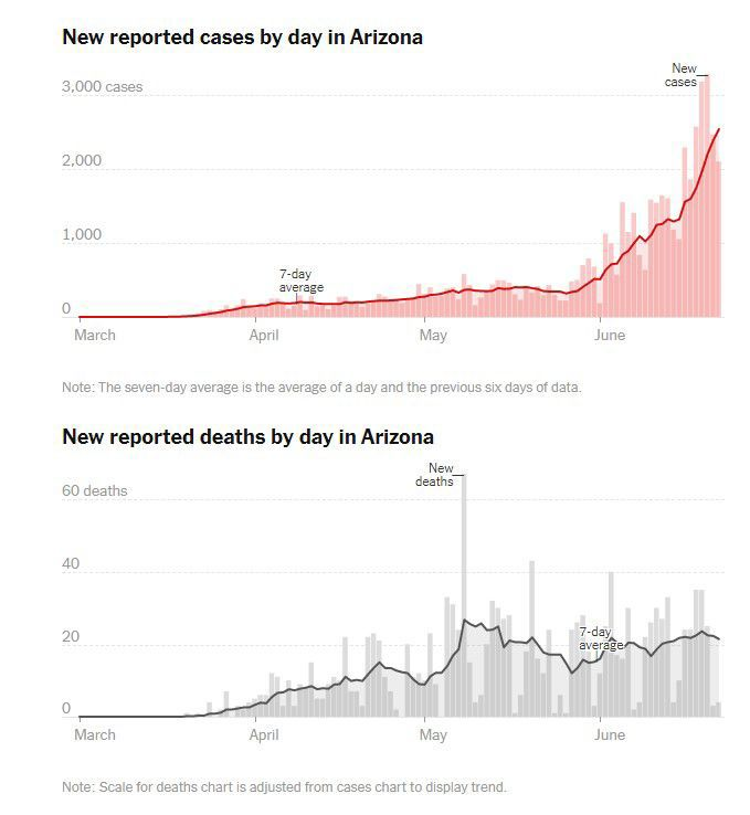 Covid cases and deaths in Arizona
