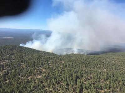 Bringham Fire near Alpine