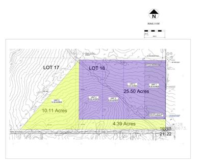 PTLS Council repeals RVP zoning