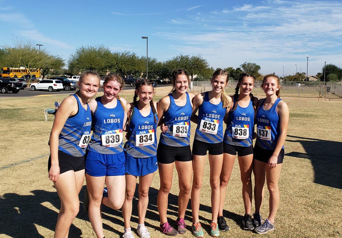 Snowflake girls third at state