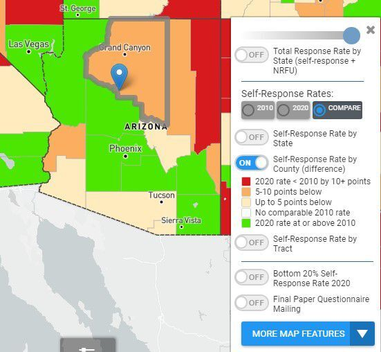Census undercount by county