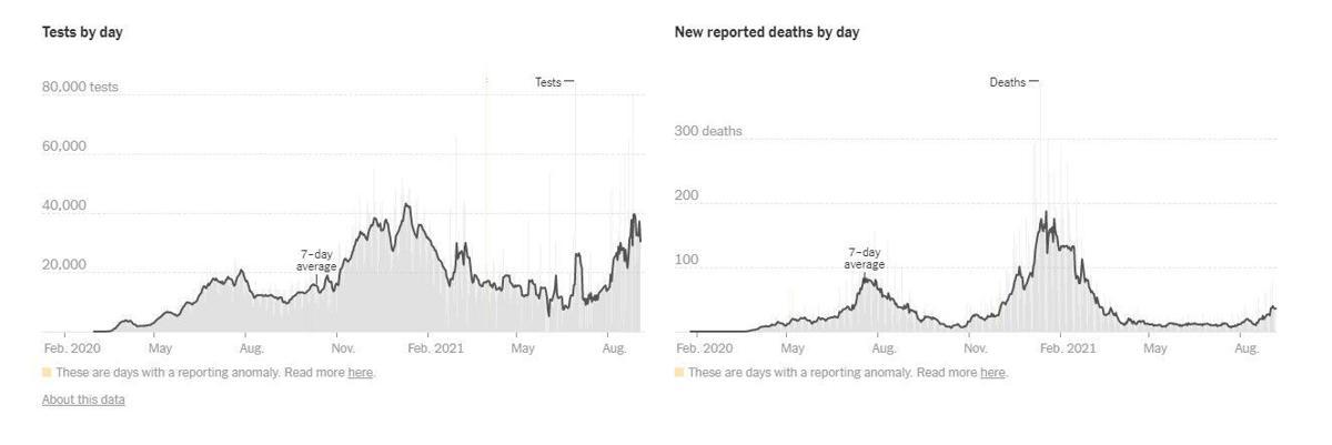 az covid tests deaths.jpg