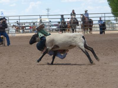 Round Valley Roundup Junior Rodeo