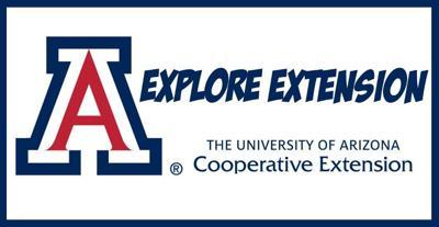 Explore Extension logo
