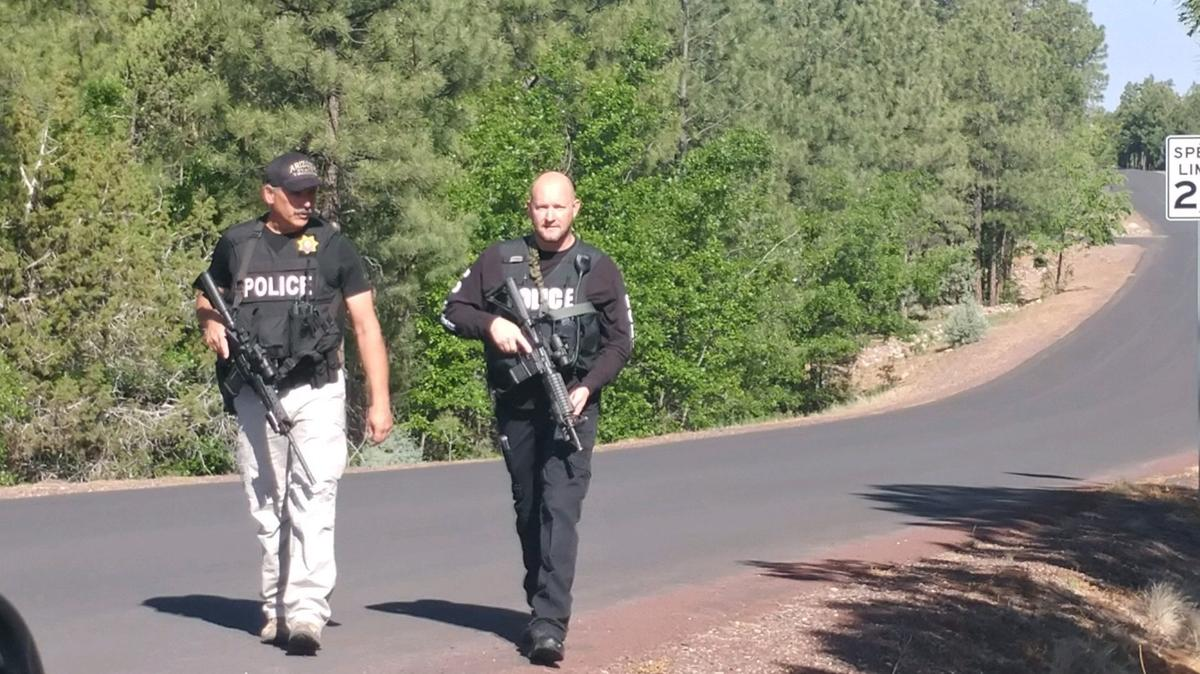 Sierra Pines search