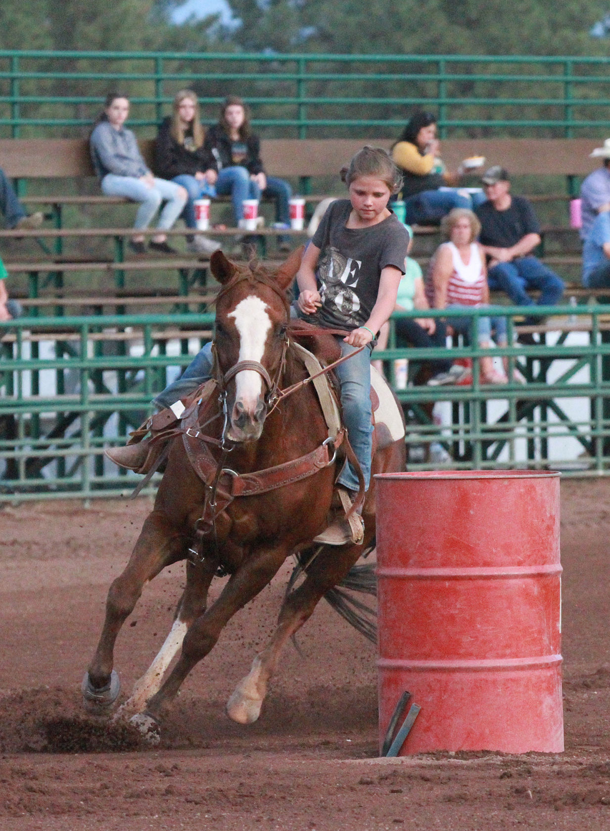 Barrel Racing Series Ends Saddle Winners Announced Local Sports Wmicentral Com