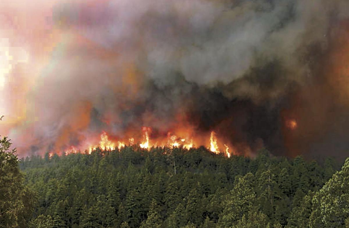 Rodeo-Chediski Fire