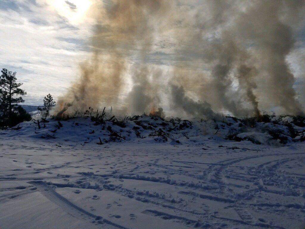 Lakeside Ranger District plans prescribed slash pile burn - photo