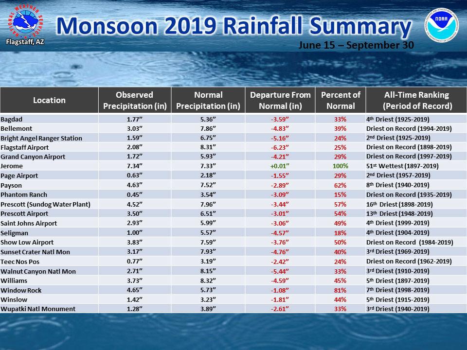 2019 monsoon rainfall