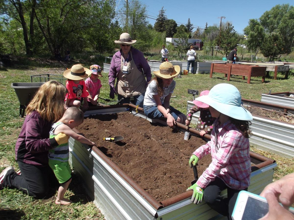 Number-one community garden in Arizona hosting Expo May 25