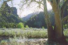 Down The Blue RiverThe Old Cowboy Trail