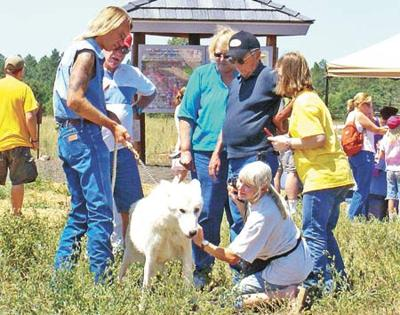 Learn about wolf behavior Saturday