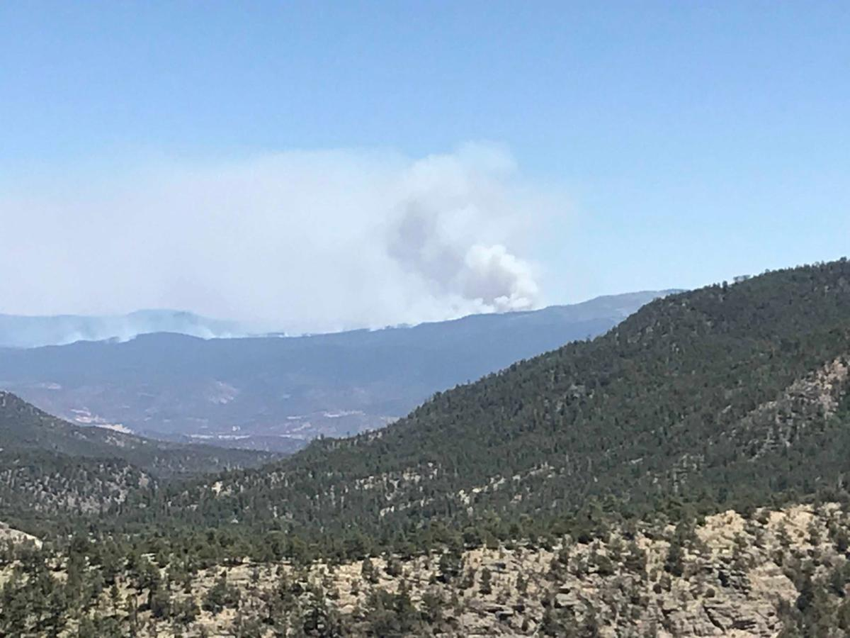 More On Bi Partisanship >> Area firefighters responding to Buzzard Fire | Latest News | wmicentral.com