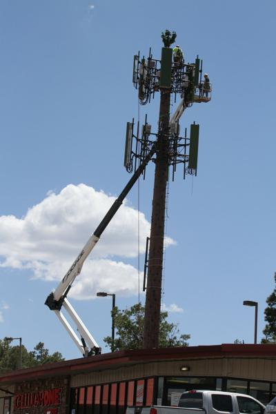 Monopine cell tower in Show Low