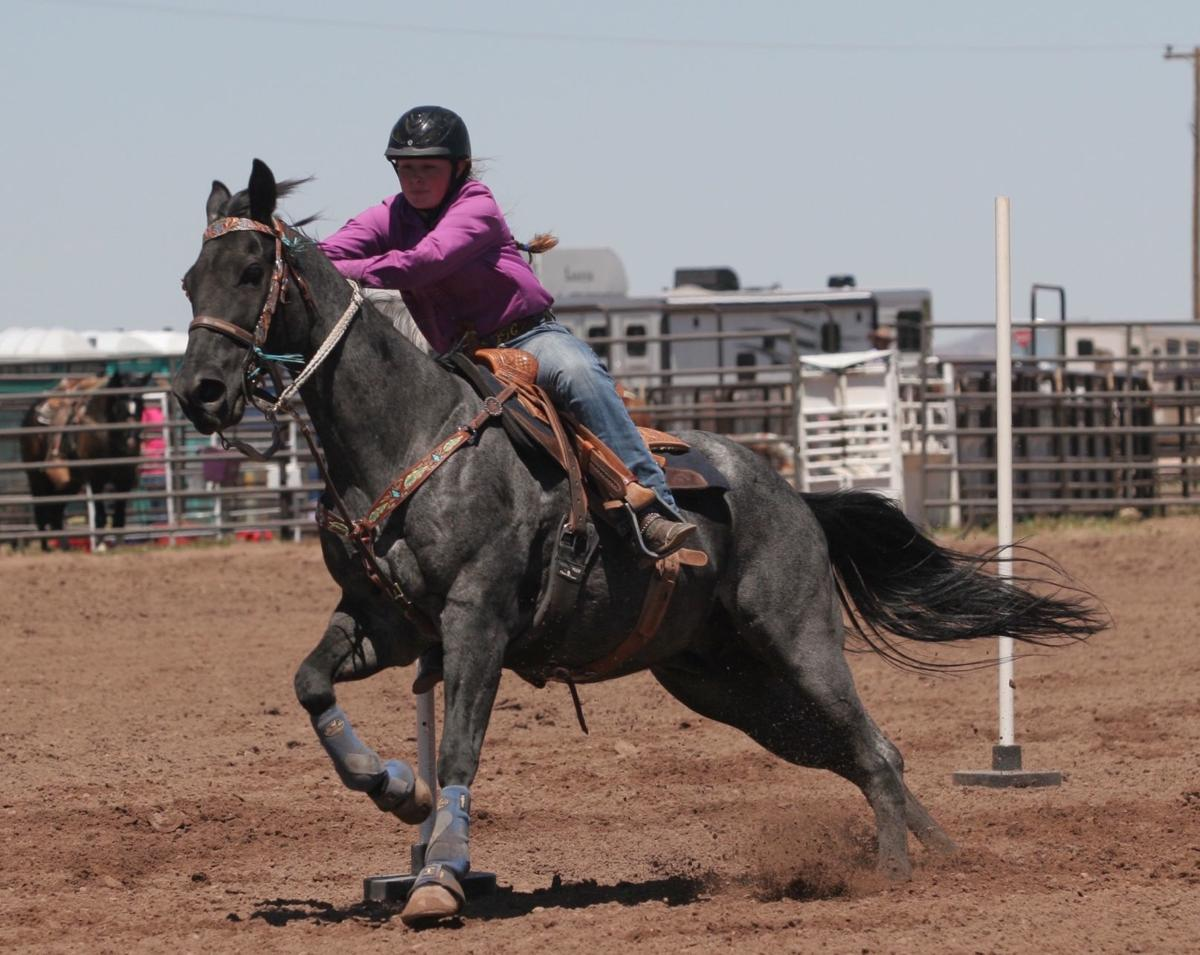 RV Roundup Rodeo - pole bending action shot