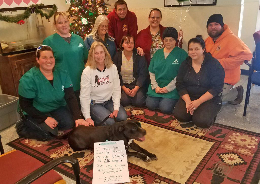After 896 days, dog finds home for the holidays   Latest