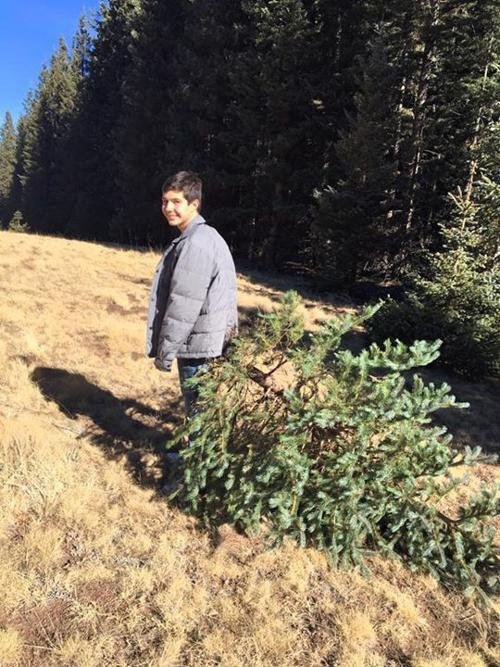 Prescott National Forest Christmas Tree Permits 2021 Christmas Tree Permits Available On Saturdays Briefs Wmicentral Com