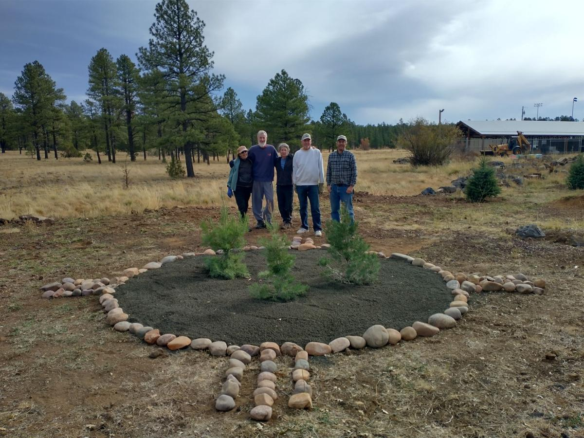 WMNC and TRACKS begin a native tree memorial