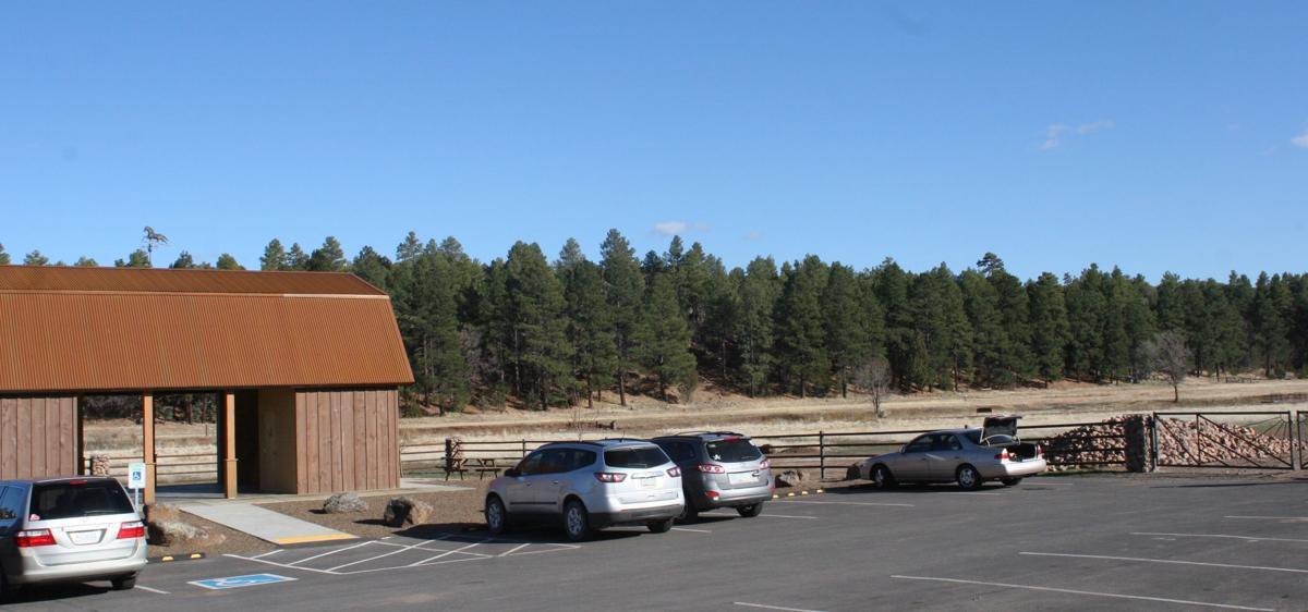 Show Low Bluff/Meadow Trail