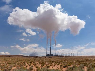 Biomass vs coal