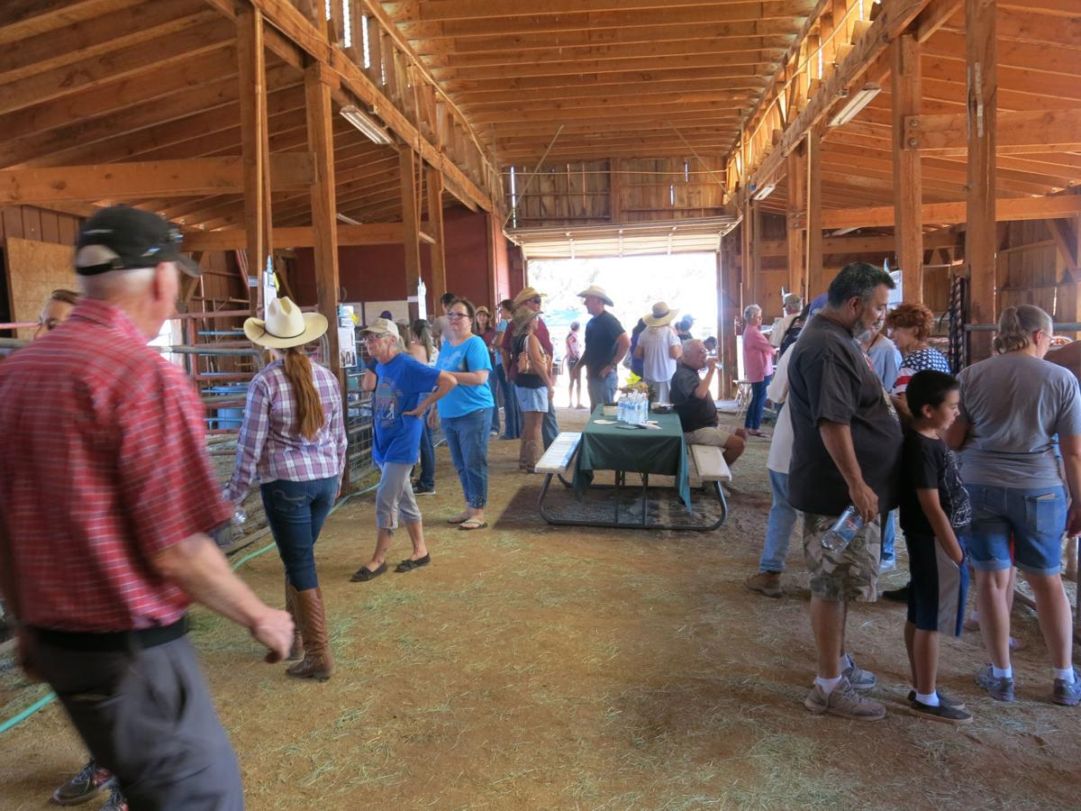 Equine rescue humbled by open house attendance