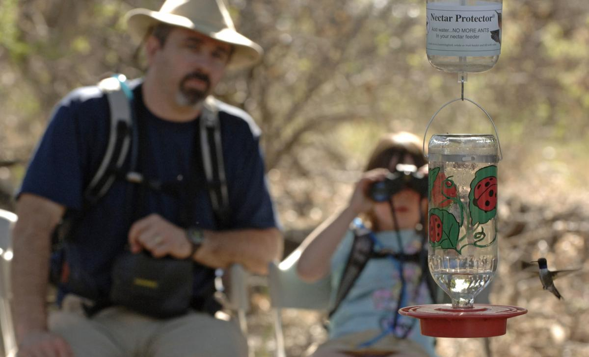 15th annual High Country Hummingbird Festival July 28