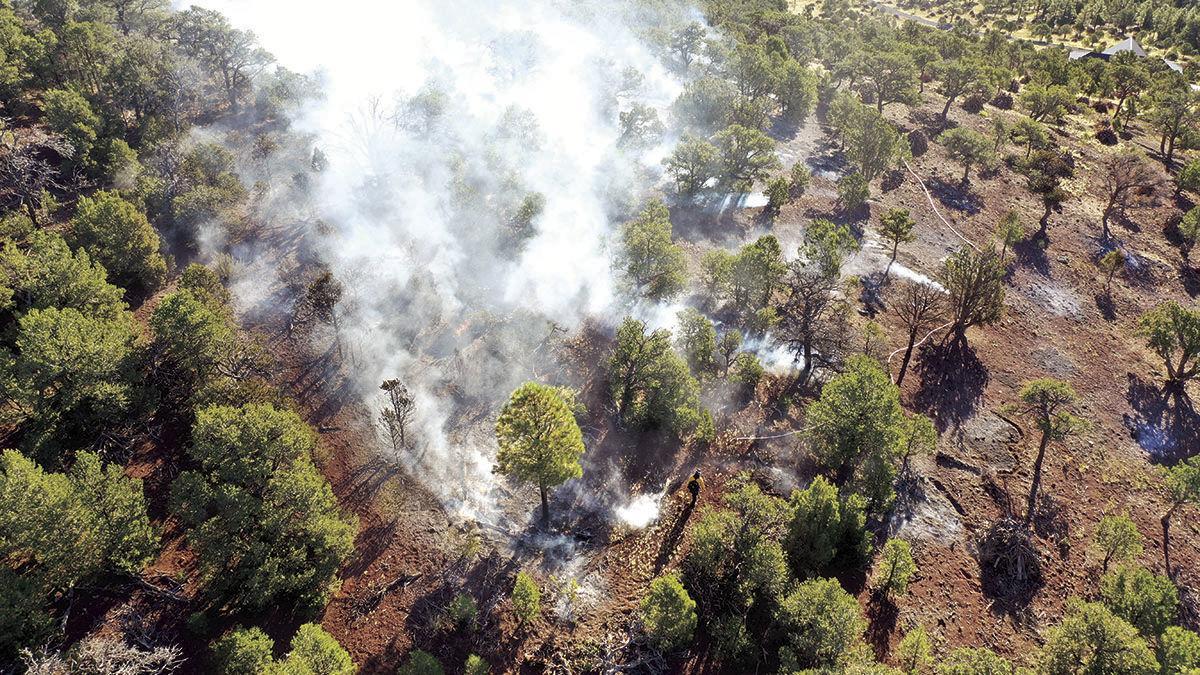 Serviceberry Hill Fire