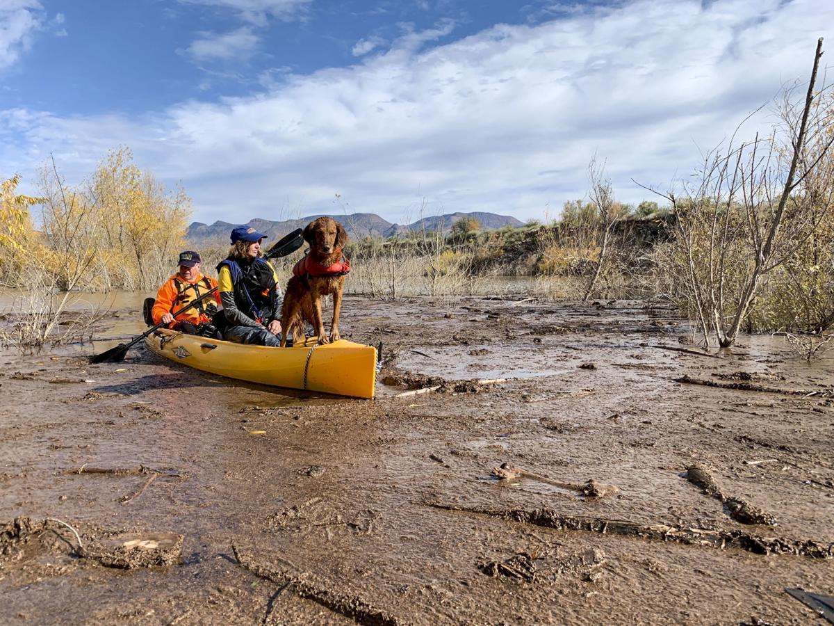 Searching Tonto Creek