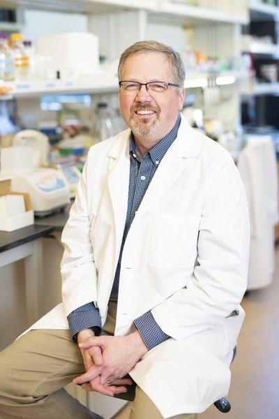 Foundation investigates lupus