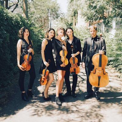 RedRock Strings